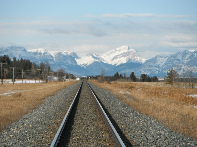 Making Tracks to Canmore Morley, Alberta Canada