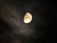 Night Moon - Surrey, British Columbia Canada