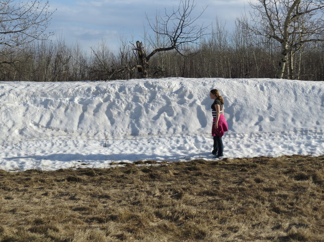 There are still a few snowbanks Paradise Hill, Saskatchewan Canada