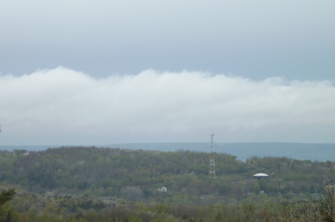 am fog bank New Minas, Nova Scotia Canada