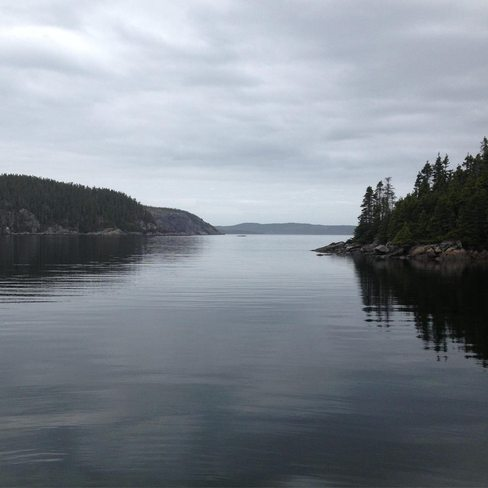 long reach island Eastport, Newfoundland and Labrador Canada