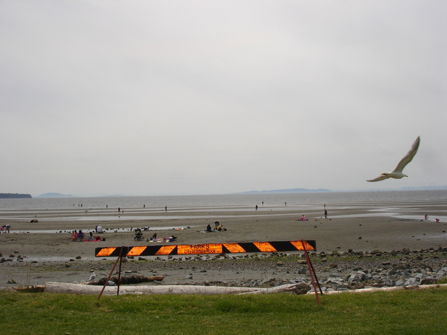 Low tide at White Rock BC White Rock, British Columbia Canada