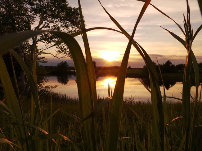 Sunset Over the River Tracadie-Sheila, New Brunswick Canada