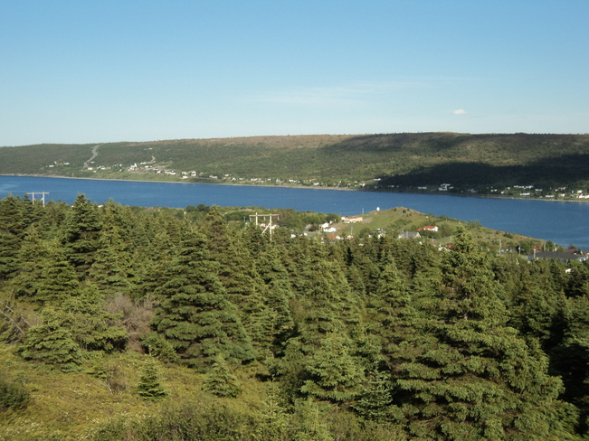 Harbour grace from the Danny Cleary Lookout Carbonear, Newfoundland and Labrador Canada
