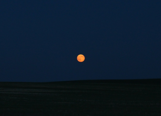 Supermoon near Richmound Richmound, Saskatchewan Canada