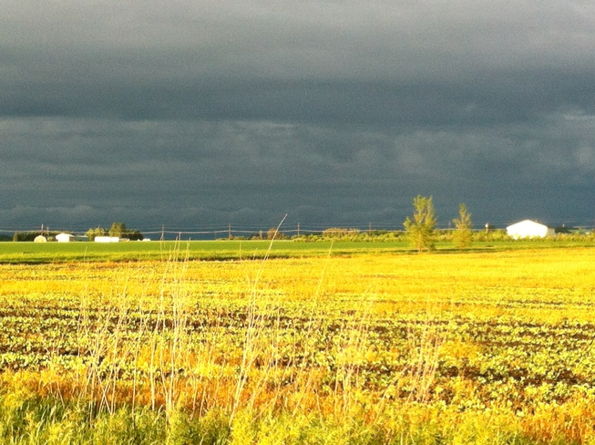 Dark Clouds in Sunshine Portage La Prairie, Manitoba Canada
