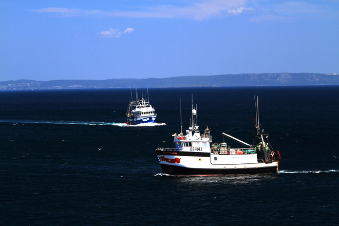 Fishing Boats Bay Roberts, Newfoundland and Labrador Canada