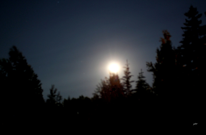 Super Moon in the Pines Moonbeam, Ontario Canada