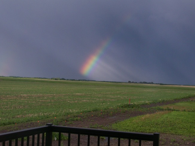 After the rain Neuanlage, Saskatchewan Canada