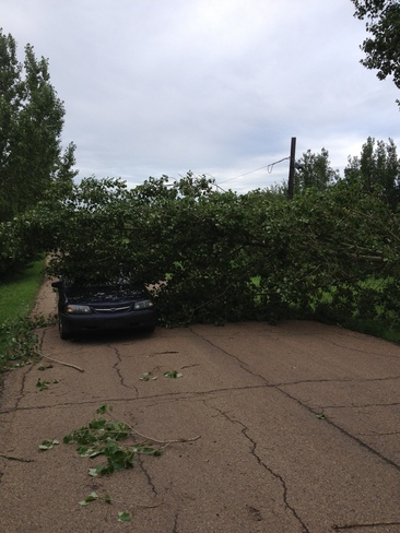 last nights damage Edmonton, Alberta Canada