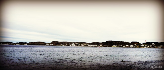 Beautiful Twillingate NL Twillingate, Newfoundland and Labrador Canada