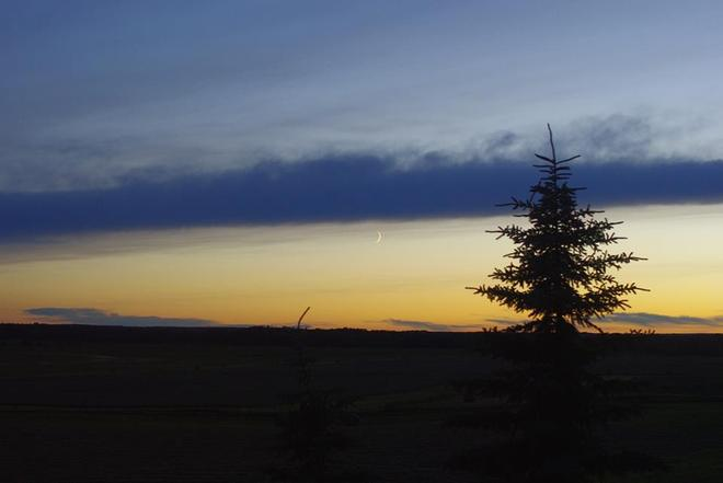 Crescent moon at sunset Onoway, Alberta Canada