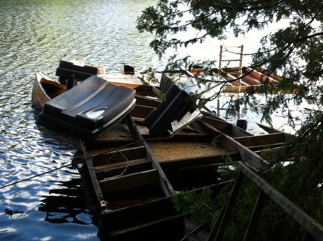 Storm Damage Catchacoma Lake, Ontario Canada