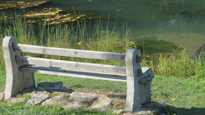 Bench at the Pond St. Catharines, Ontario Canada