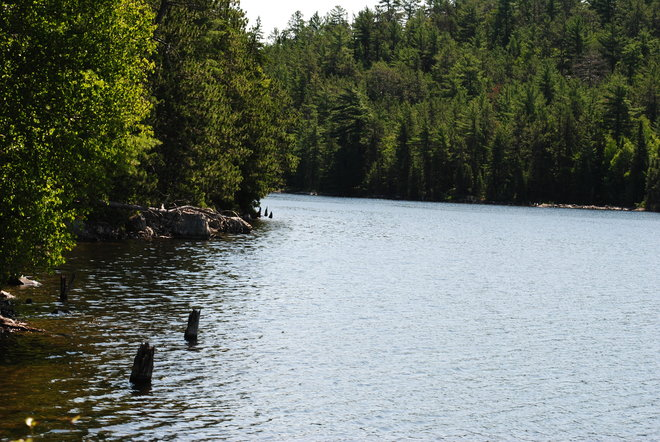 Nice view Temagami, Ontario Canada