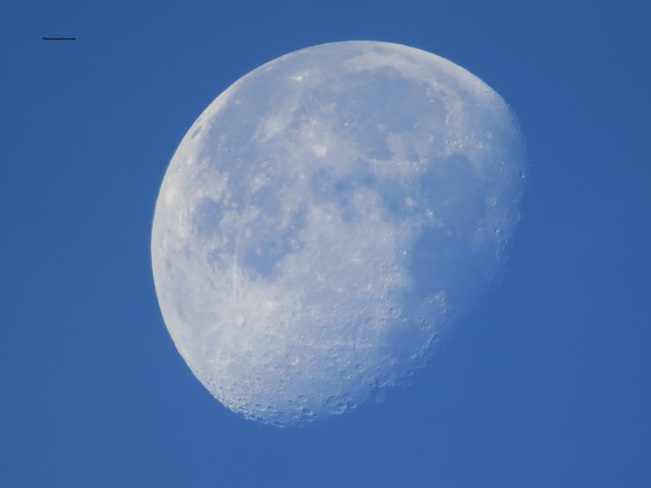 Beautiful Morning Moon New Westminster, British Columbia Canada