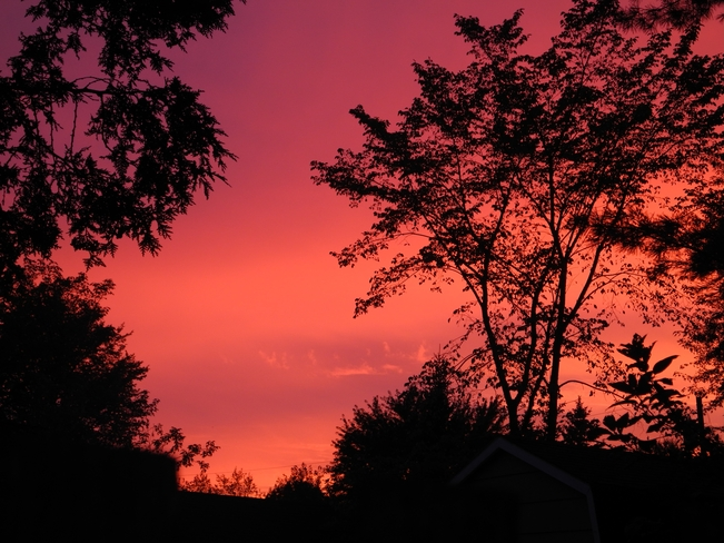 Scarlet Sunset Fredericton, New Brunswick Canada