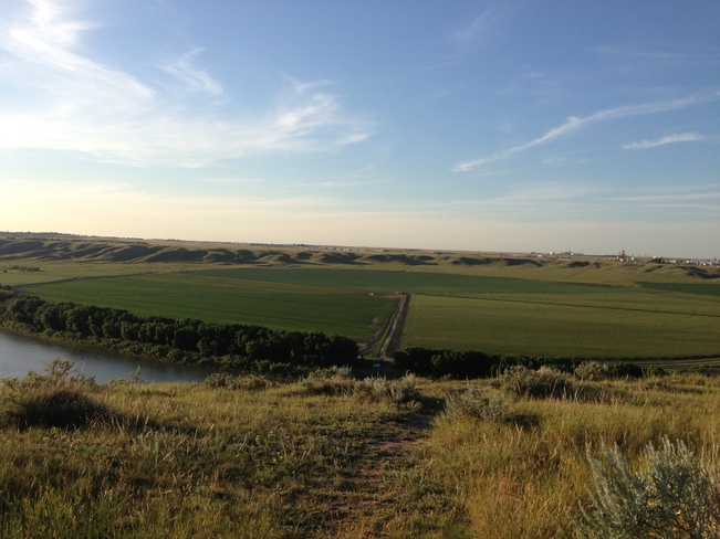 Evening Walk overlooking the South Saskatchewan River Medicine Hat, Alberta Canada