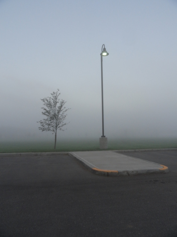 Fog so thick you could cut it with a knife... Taber, Alberta Canada