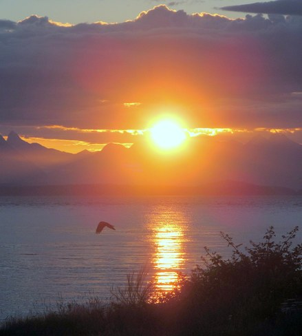 Morning Sunrise! Campbell River, British Columbia Canada