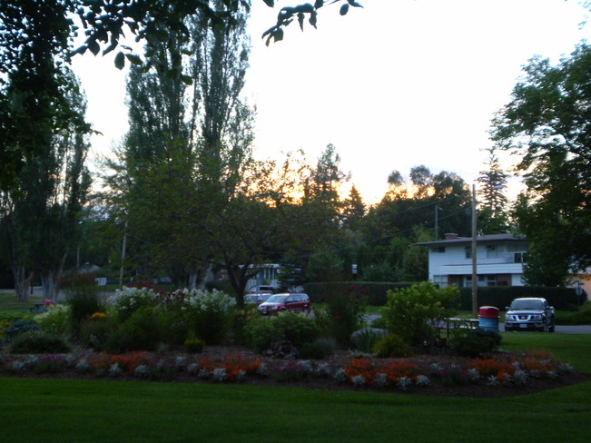 sunsetting beautifully behind garden at Ft.George Park Prince George, British Columbia Canada