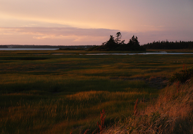 evening over the salt marsh Wedgeport, Nova Scotia Canada
