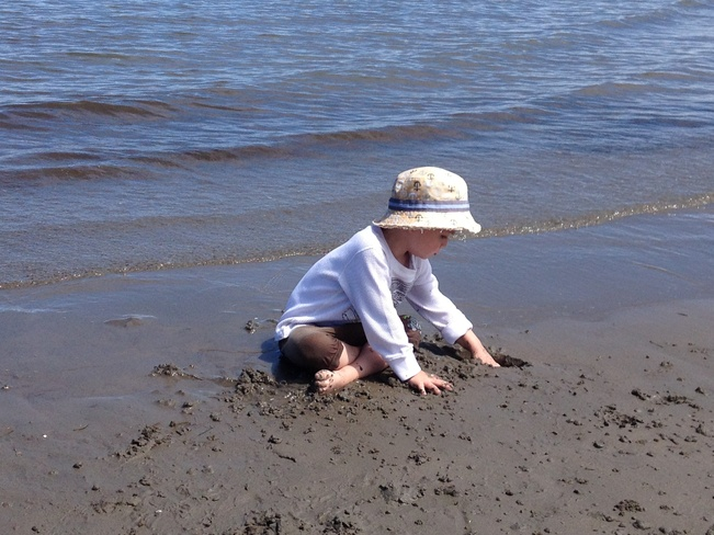 Playing on the sand bar Bathurst, New Brunswick Canada
