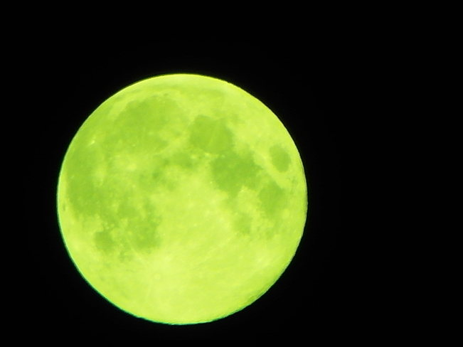 Midnight moon.blue moon looking green to me. Calgary, Alberta Canada