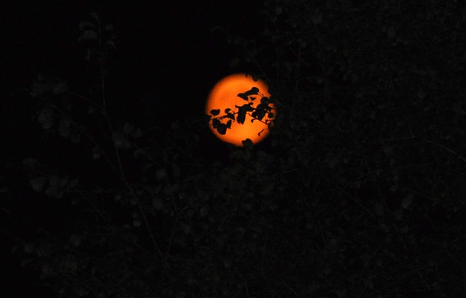 Red full moon Smiths Falls, Ontario Canada