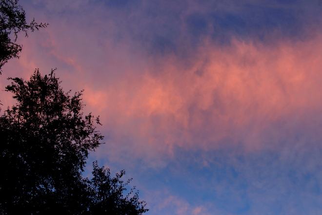 pink roll cloud Surrey, British Columbia Canada
