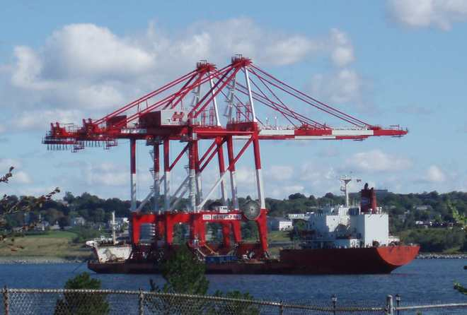 The Cranes Have Arrived Halifax, Nova Scotia Canada