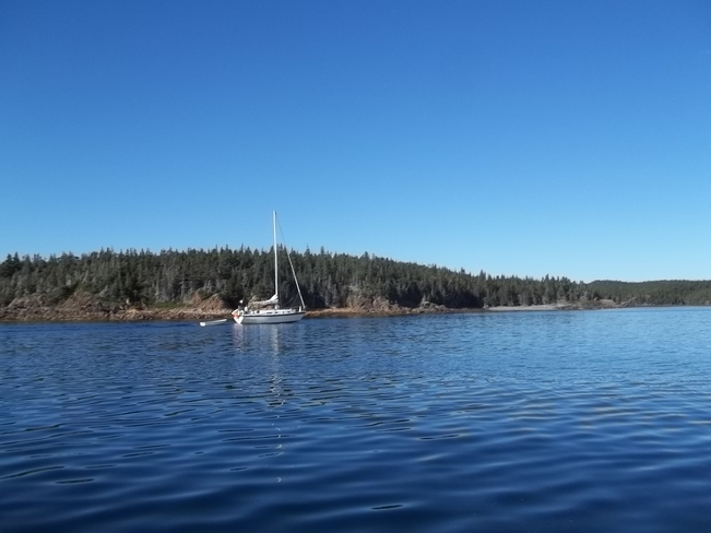 Sailing Birchy Bay, Newfoundland and Labrador Canada
