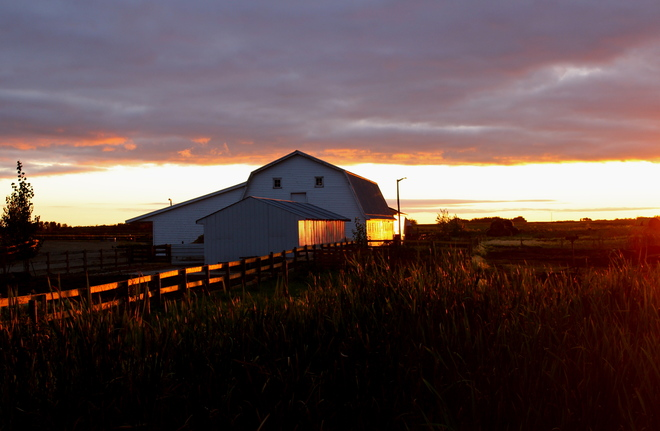 Country Evening Dalmeny, Saskatchewan Canada