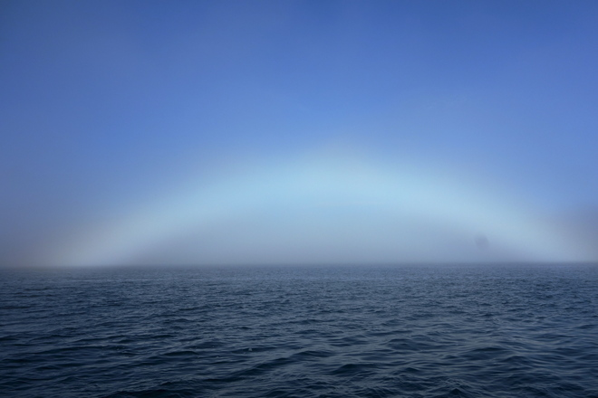 """Fog-Bow"" off Sambro head Halifax, Nova Scotia Canada"