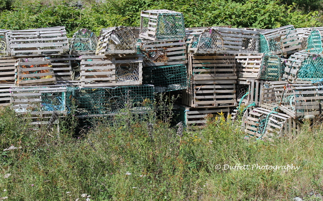 Lobster pots Portugal Cove-St. Philip's, Newfoundland and Labrador Canada