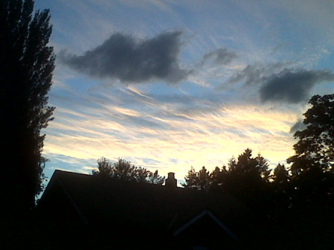 Clouds over trees at sunset. Courtenay, British Columbia Canada