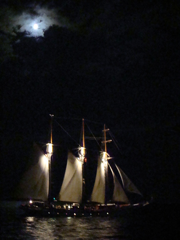 Tall Ship in the Night Toronto, Ontario Canada