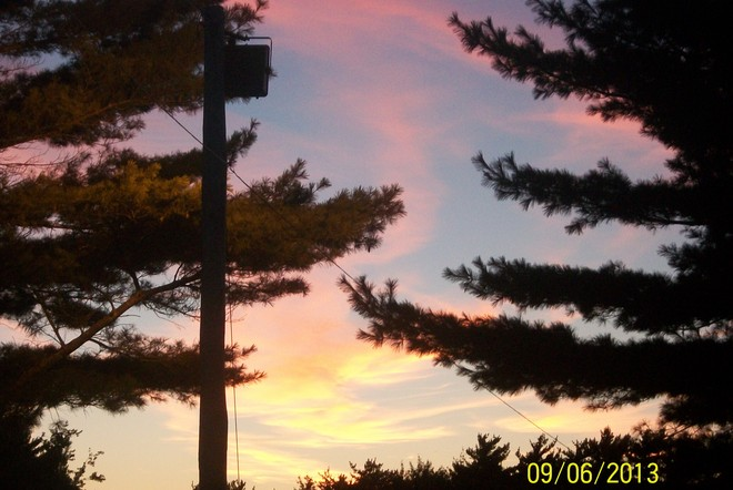 Pine Trees & Sunset Shelburne, Nova Scotia Canada