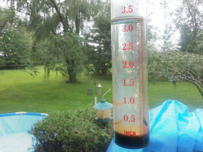 Rainfall from Wednesday night in Inkerman Inkerman, Ontario Canada