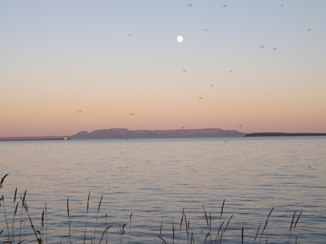 MOON RISE WITH MISQUITOS STILL ABUNDANT Thunder Bay, Ontario Canada