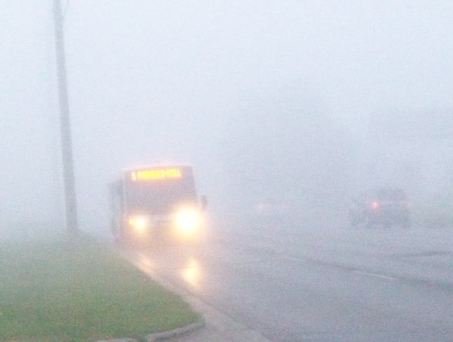 From out of Nowhere in the Fog is this Transit Bus Belleville, Ontario Canada