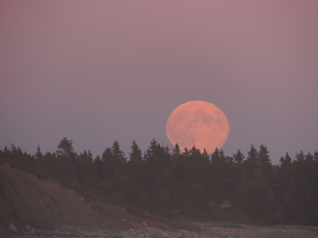 Moon Rises Over Hirtles Beach September 19th 2013 Lunenburg, Nova Scotia Canada