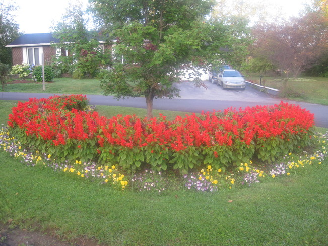 Town beautification Pasadena, Newfoundland and Labrador Canada