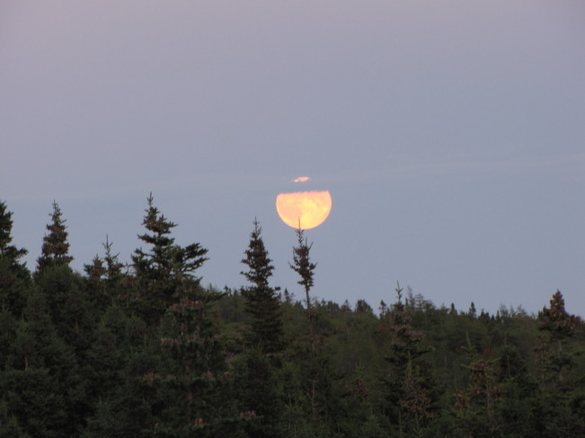 Moon rising over Trinity Bay Arnold's Cove, Newfoundland and Labrador Canada