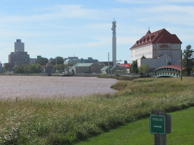 Moncton skyline along the river