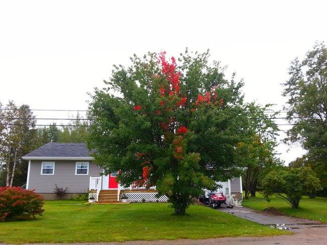 Sept 25 Glovertown, Newfoundland and Labrador Canada