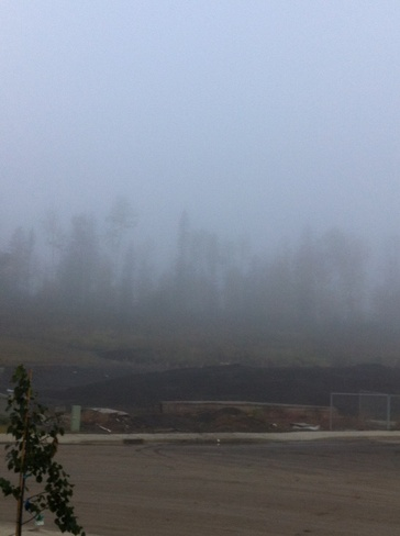 fog every where Fort McMurray, Alberta Canada