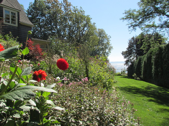 garden with lake Beaconsfield, Quebec Canada