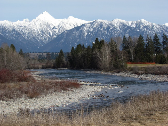St. Mary River - Celebrating BC Rivers Day Cranbrook, British Columbia Canada