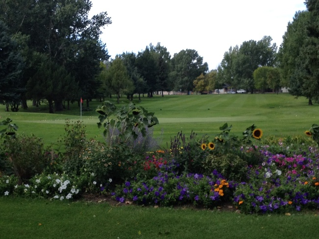 Sadly the golf season ending... Medicine Hat, Alberta Canada